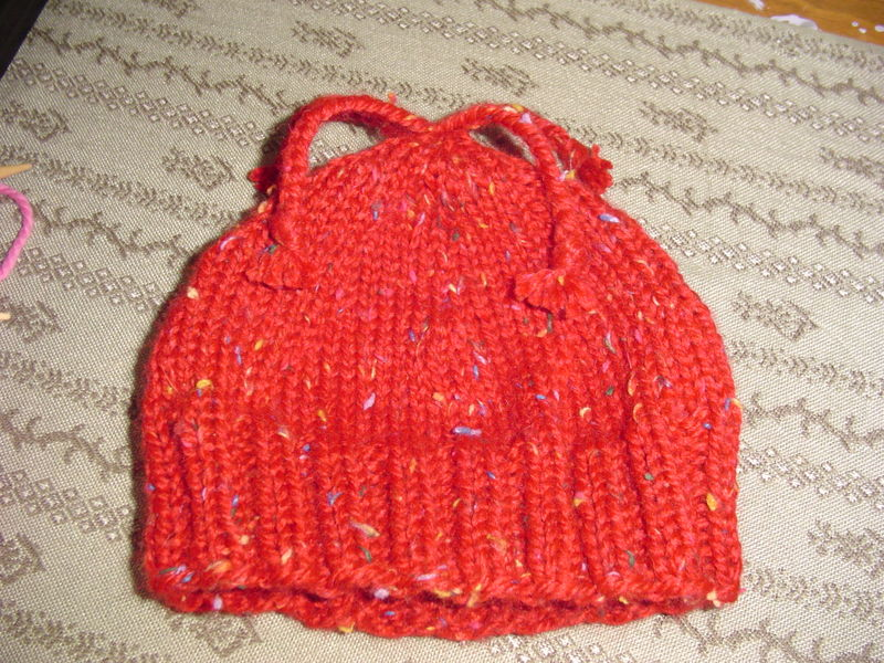 February 2009 knitting 005